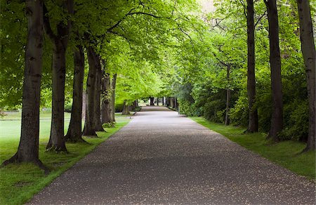 earth no people - Tree-lined avenue, St. Stephen's Green, Dublin City, County Dublin, Ireland Stock Photo - Rights-Managed, Code: 832-03233783
