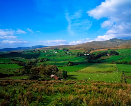 Sperrin Mountains, Co Tyrone, Ireland Stock Photo - Rights-Managed, Code: 832-03639813