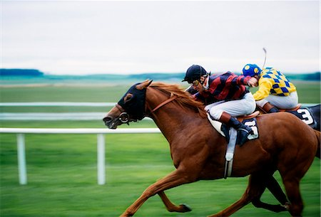 Horse Racing; Two Horses Neck In Neck During A Horse Race Stock Photo - Rights-Managed, Code: 832-03639914