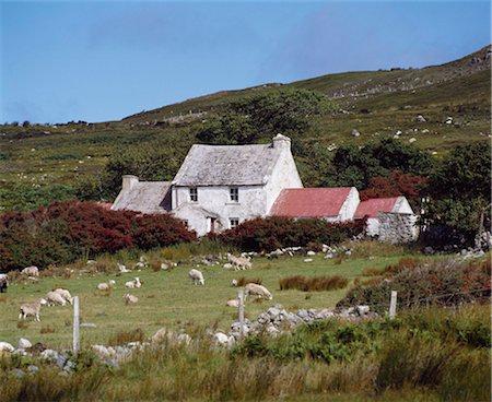 Cottage, Ireland Stock Photo - Rights-Managed, Code: 832-03640099