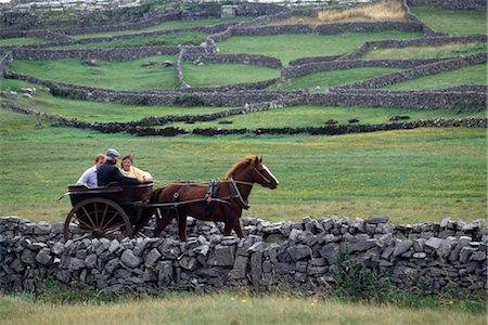 Jaunting Car, Killarney, County Kerry, Ireland Stock Photo - Rights-Managed, Code: 832-03640686