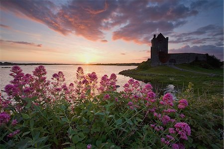 Sunset Over Dunguaire Castle, Kinvara, County Galway, Ireland Stock Photo - Rights-Managed, Code: 832-03640849