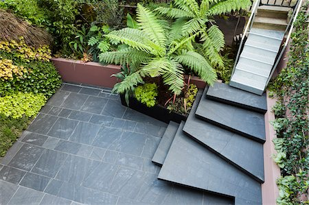 slate - Patio garden at basement level at the Morgan house in Notting Hill, London, UK. Designed by Modular Gardens in conjunction with Crawford & Gray Architects. Stock Photo - Rights-Managed, Code: 845-07561415