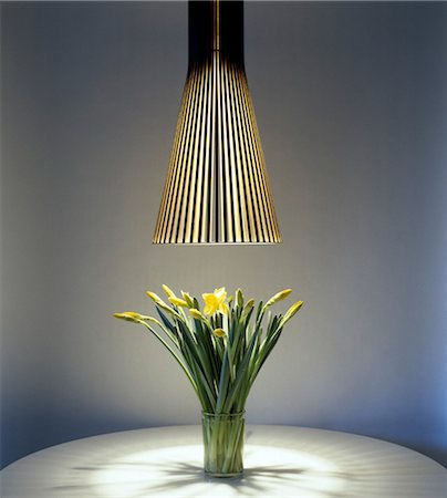 funky flower designs - Daffodils in vase underneath a pendant lamp. Stock Photo - Rights-Managed, Code: 845-03777468