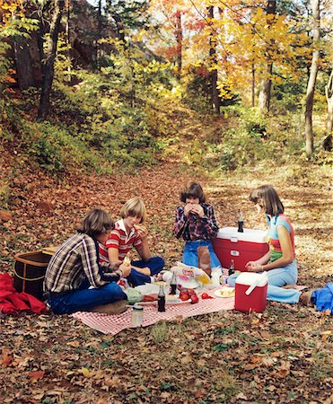 1970s - 1980s GROUP TEEN BOYS GIRLS HAVING AUTUMN PICNIC Stock Photo - Rights-Managed, Code: 846-05646720