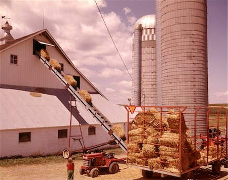 1970s GIRL WATCHING HAY BALES ON CONVEYOR BELT LOADING INTO BARN BY FARM  GRAIN SILOS Stock Photo - Rights-Managed, Code: 846-05646848