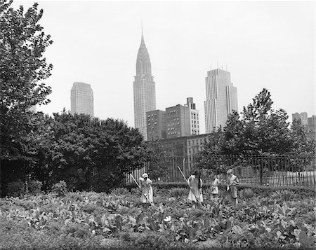 1940s - 1943 CHILDREN WORKING IN VICTORY GARDENS IN ST. GABRIEL'S PARK NEW YORK CITY CHRYSLER BUILDING VISIBLE IN BACKGROUND Stock Photo - Rights-Managed, Code: 846-05647981