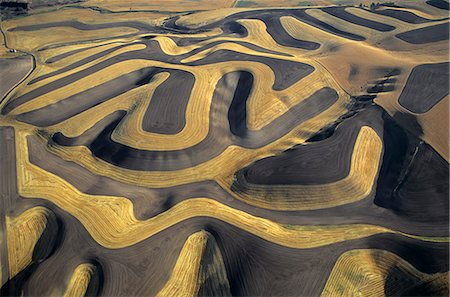 CONTOUR FARMING AERIAL VIEW OF  A PALOUSE WHEAT FARM EASTERN WASHINGTON Stock Photo - Rights-Managed, Code: 846-06112012
