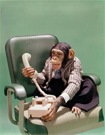 1970s CHIMPANZEE WEARING BUSINESS SUIT SITTING IN OFFICE CHAIR USING TELEPHONE Stock Photo - Rights-Managed, Code: 846-02795354