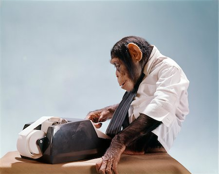 CHIMPANZEE USING ADDING MACHINE WEARING WHITE SHIRT NECKTIE Stock Photo - Rights-Managed, Code: 846-02795352