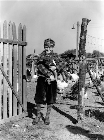 1920s 1930s SMILING YOUNG BOY KNICKERS HOLDING TURKEY BY FENCE ON TURKEY FARM Stock Photo - Rights-Managed, Code: 846-02797657
