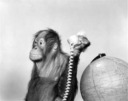 1960s ORANGUTAN SITTING NEXT TO GLOBE WITH TELEPHONE RECEIVER IN HAND Stock Photo - Rights-Managed, Code: 846-02797929
