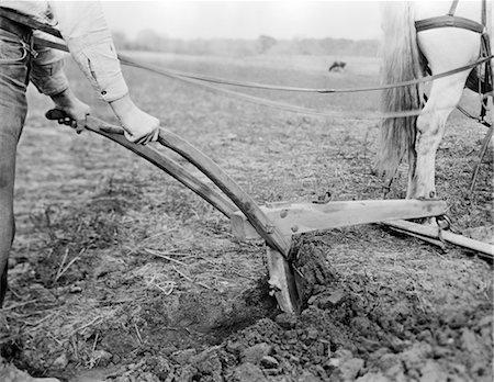 plow - HORSE DRAWN PLOW FARM FARMER FARMING Stock Photo - Rights-Managed, Code: 846-02792816