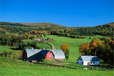 FARM S. ALBANY, VERMONT Stock Photo - Rights-Managed, Code: 846-03164320
