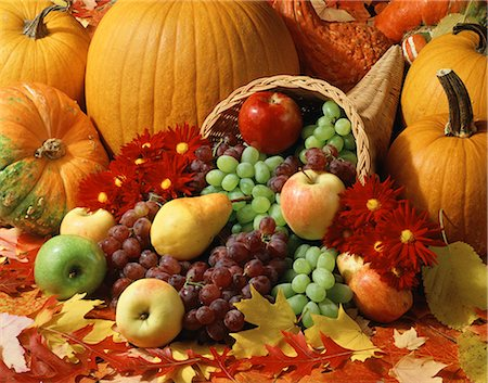 seasonal - AUTUMN HARVEST CORNUCOPIA Stock Photo - Rights-Managed, Code: 846-03164571