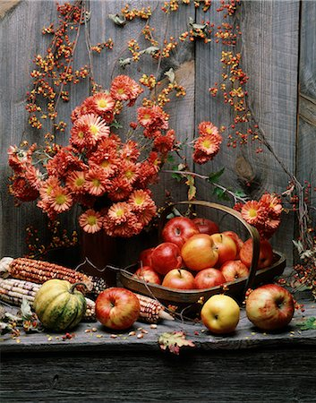 seasonal - AUTUMN HARVEST STILL LIFE SQUASH AND FRUITS FLOWERS AND CORN AGAINST BARN WOOD Stock Photo - Rights-Managed, Code: 846-03164587
