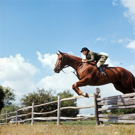 1970s WOMAN EQUESTRIAN RIDER JUMPING OVER SPLIT RAIL FENCE DURING STEEPLECHASE HORSE RACE Stock Photo - Rights-Managed, Code: 846-03164627