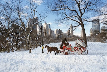 NEW YORK NY HORSE AND CARRIAGE IN CENTRAL PARK IN SNOW Stock Photo - Rights-Managed, Code: 846-03165457