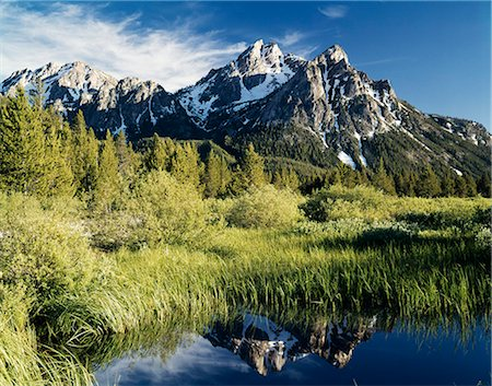McGOWAN PEAK CHALLIS NAT'L FOREST IDAHO Stock Photo - Rights-Managed, Code: 846-03165596