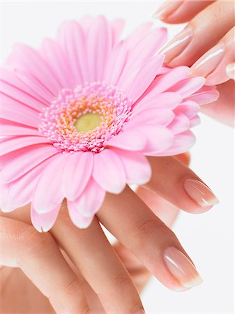 Natural nails holding pink flower Stock Photo - Rights-Managed, Code: 847-02781782