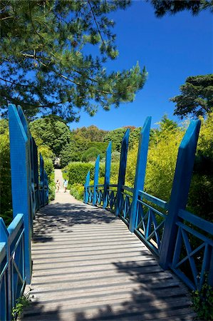 Blue Japanese-style bridge in the sub-tropical Abbey Gardens, Island of Tresco, Isles of Scilly, England, United Kingdom, Europe Stock Photo - Rights-Managed, Code: 841-05796049