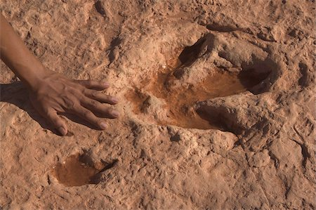 prehistoric - Dinosaur prints on Navajo lands in Tuba City, Arizona, United States of America, North America Stock Photo - Rights-Managed, Code: 841-05797061