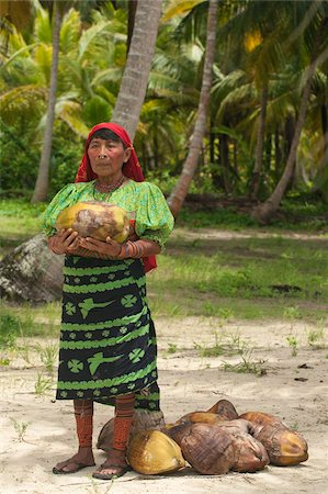 panama traditional costume - Kuna Indian woman collecting coconuts, used for bartering with Columbians), on a deserted tropical island in Kuna Yala (San Blas Islands), Caribbean coast of northern Panama, Central America Stock Photo - Rights-Managed, Code: 841-05797070