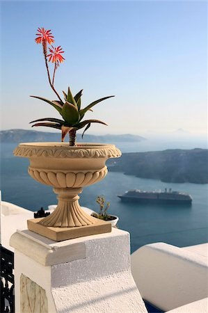 Firostefani, Santorini, Cyclades Islands, Greek Islands, Greece, Europe Stock Photo - Rights-Managed, Code: 841-05960031
