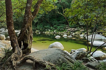 queensland - Mossman Gorge, Daintree National Park, UNESCO World Heritage Site, Queensland, Australia, Pacific Stock Photo - Rights-Managed, Code: 841-05960849