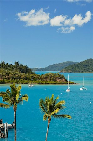 queensland - Shutehaven Harbour, Whitsunday Islands, Queensland, Australia, Pacific Stock Photo - Rights-Managed, Code: 841-05960871