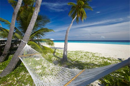 Hammock and tropical beach, Maldives, Indian Ocean, Asia Stock Photo - Rights-Managed, Code: 841-05961987