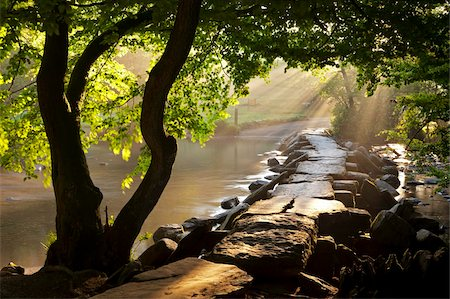 Misty summer morning by Tarr Steps clapper bridge, Exmoor National Park, Somerset, England, United Kingdom, Europe Stock Photo - Rights-Managed, Code: 841-05962608