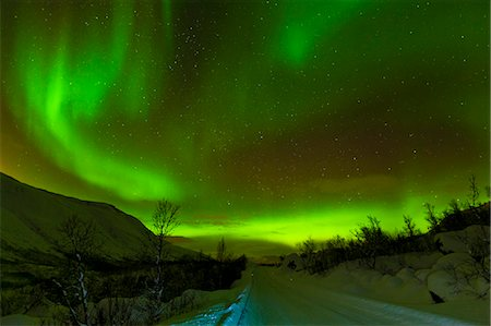 dreamy - Aurora borealis (Northern Lights) seen over a snow covered road, Troms, North Norway, Scandinavia, Europe Stock Photo - Rights-Managed, Code: 841-06030769