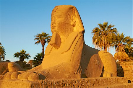 egypt - Sphinx path, Temple of Luxor, Thebes, UNESCO World Heritage Site, Egypt, North Africa, Africa Stock Photo - Rights-Managed, Code: 841-06032857