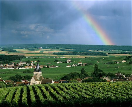 rainbow - Champagne vineyards and rainbow, Ville-Dommange, near Reims, Champagne, France, Europe Stock Photo - Rights-Managed, Code: 841-06033452