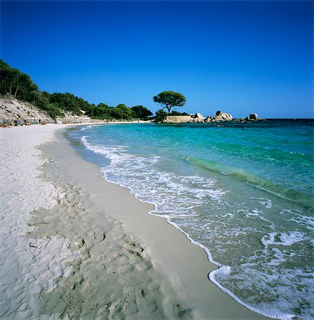 Palombaggia Beach, near Porto Vecchio, South East Corsica, Corsica, France, Mediterranean, Europe Stock Photo - Rights-Managed, Code: 841-06033744