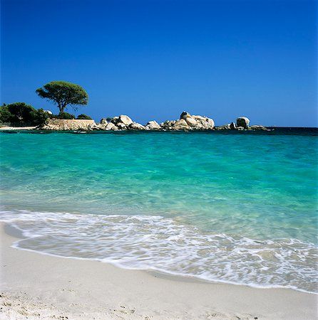 Palombaggia Beach, near Porto Vecchio, South East Corsica, Corsica, France, Mediterranean, Europe Stock Photo - Rights-Managed, Code: 841-06033746