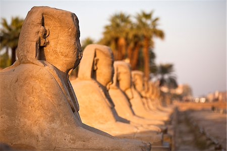 Luxor Temple, Luxor, Thebes, UNESCO World Heritage Site, Egypt, North Africa, Africa Stock Photo - Rights-Managed, Code: 841-06033876