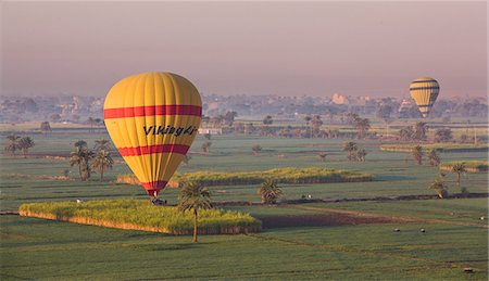 Hot air balloons landing in the fields by Luxor's Theban Necropolis, Thebes, Egypt, North Africa, Africa Stock Photo - Rights-Managed, Code: 841-06033885