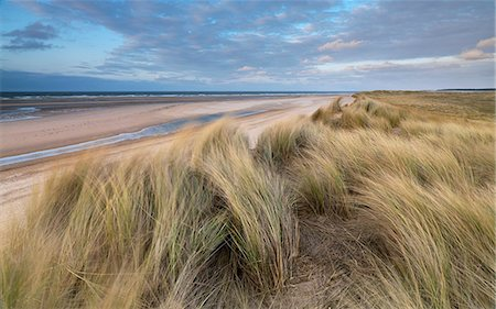 A spring evening at Holkham Bay, Norfolk, England Stock Photo - Rights-Managed, Code: 841-06344692