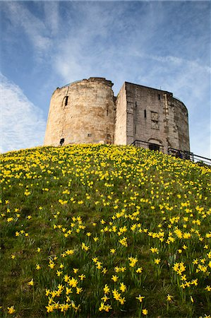 Cliffords Tower, York, Yorkshire, England Stock Photo - Rights-Managed, Code: 841-06344974