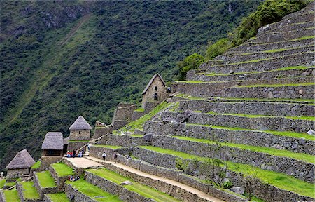 peru and culture - Agricultural terraces , Machu Picchu, peru, peruvian, south america, south american, latin america, latin american South America. The lost city of the Inca was rediscovered by Hiram Bingham in 1911 Stock Photo - Rights-Managed, Code: 841-06345388