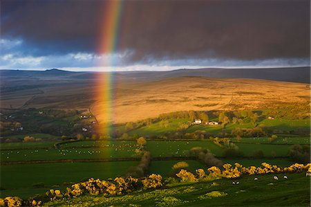 dartmoor national park - Rainbow above rolling farmland on the edges of Dartmoor National Park, Devon, England, United Kingdom, Europe Stock Photo - Rights-Managed, Code: 841-06343475