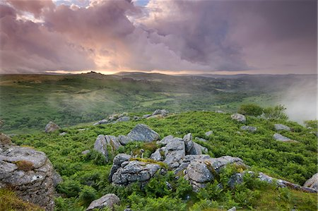 dartmoor national park - Granite rocks and bracken at Holwell Tor, looking towards Hound Tor on a stormy and misty Summer evening, Dartmoor National Park, Devon, England, United Kingdom, Europe Stock Photo - Rights-Managed, Code: 841-06343541