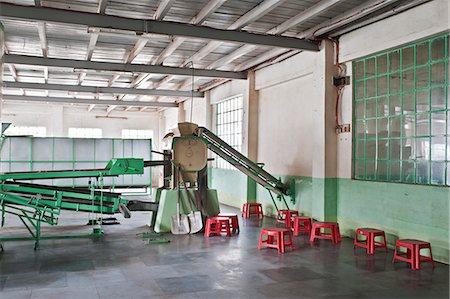 Glenburn Tea Factory, near Darjeeling, West Bengal, India, Asia Stock Photo - Rights-Managed, Code: 841-06445616