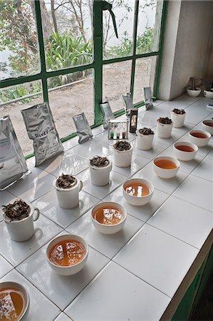 Glenburn Tea Factory, near Darjeeling, West Bengal, India, Asia Stock Photo - Rights-Managed, Code: 841-06445625