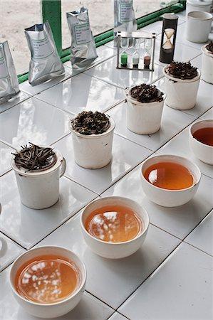 Glenburn Tea Factory, near Darjeeling, West Bengal, India, Asia Stock Photo - Rights-Managed, Code: 841-06445626