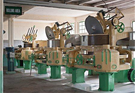 Glenburn Tea Factory, near Darjeeling, West Bengal, India, Asia Stock Photo - Rights-Managed, Code: 841-06445629