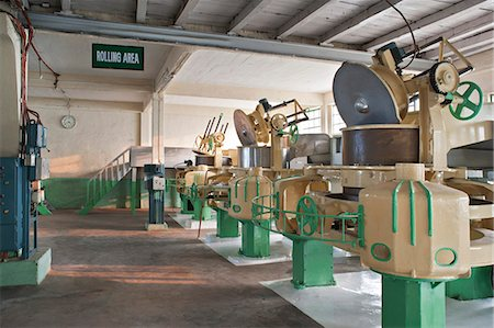 Glenburn Tea Factory, near Darjeeling, West Bengal, India, Asia Stock Photo - Rights-Managed, Code: 841-06445623