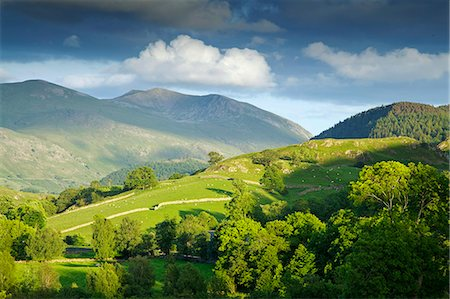 Matterdale Common, near Dale Bottom, Lake District National Park, Cumbria, England, United Kingdom, Europe Stock Photo - Rights-Managed, Code: 841-06445764